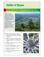 Le-piémont-du-Rey